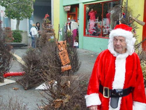 Dead Christmas Trees 004