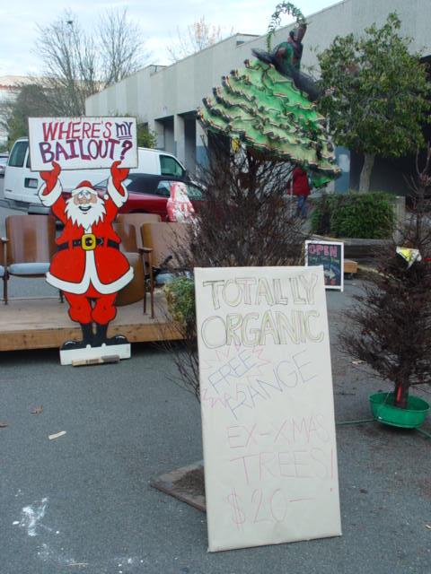 Dead Christmas Trees 012