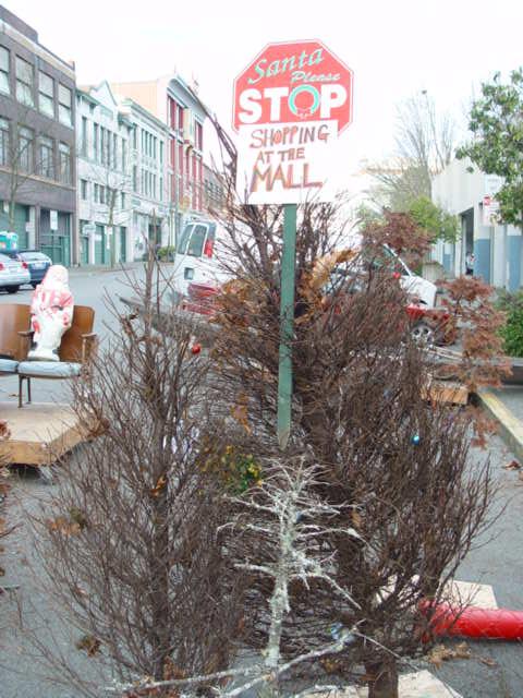 Dead Christmas Trees 008