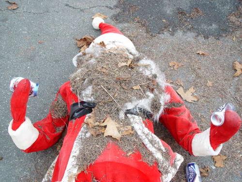 Dead Christmas Trees 001